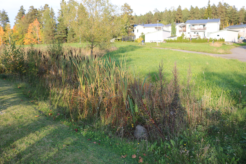 Haarla stormwater site